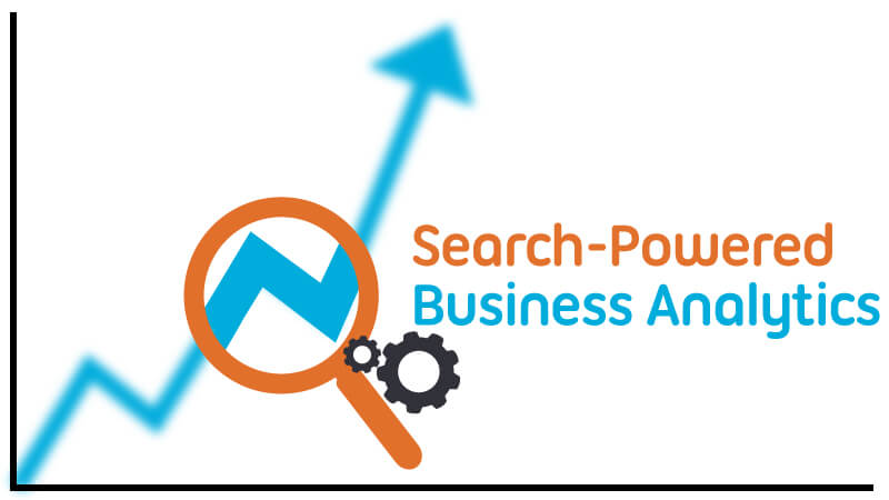 Search powered business analytics