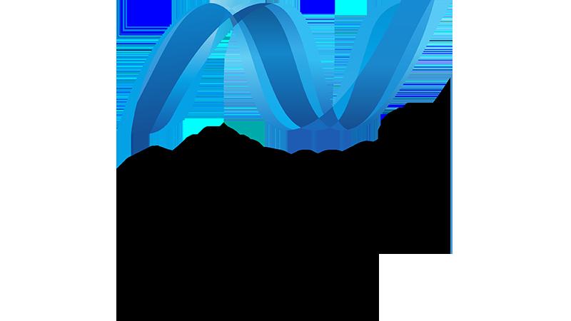 Mircosoft .net Logo