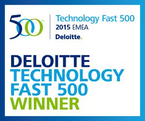 Deloitte 500 Logo
