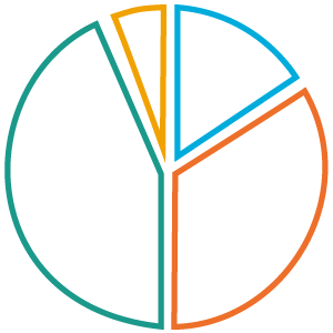 A pie chart Icon
